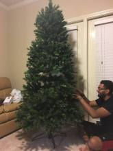 Setting up the Tree!!! :)